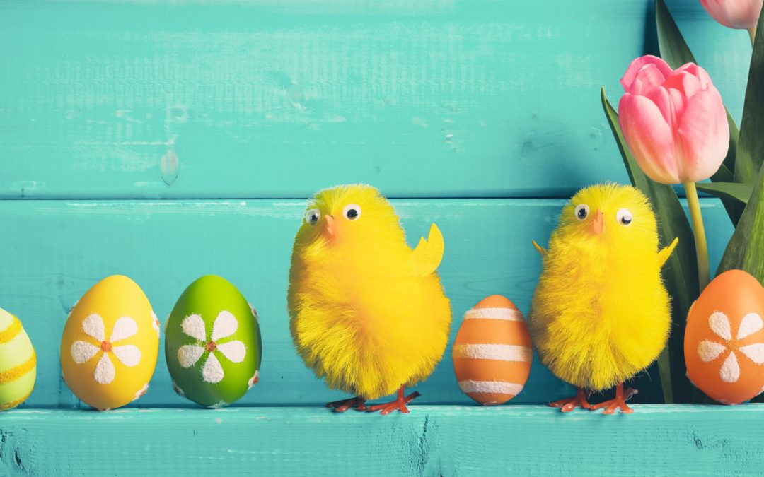 Caccia Alle Uova: Divertimento assicurato!